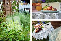 Garden / Nasz mały ogródkowy świat