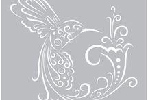 kolibri plot