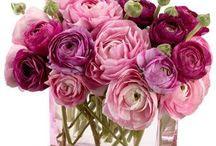 Flors decoració