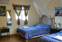 Our Rooms / each lovingly decorated with tropical paintings and island charm
