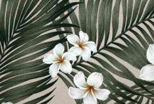 Palmfabrics