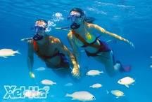 Snuba / Snuba® is the perfect combination of snorkelling and scuba where you can enjoy the most beautiful natural aquarium in the world: Xel-Ha. With Snuba® you can in and amaze at the beauty of marine life and aquatic vegetation of the Mexican Caribbean Sea. The sophisticated equipment of Xel-Ha, Snuba®, gives you complete freedom of movement and ease of breathing under water, as the tanks of compressed air are located on the surface, carried on a raft.