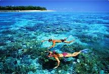 Cairns & Great Barrier Reef