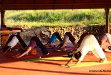 Yoga Immersion Retreats in India / Two-week Yoga Immersion retreat at AyurYoga Eco-Ashram in south India.