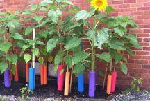Gardening ideas.