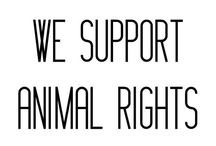 Because we LOVE animals / Animals are great, in all their forms and shapes.