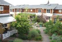 Cohousing in the News