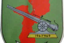 Pelotões de Infantaria Moçambique