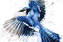 kék madár