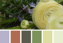 Color Schemes / Don't you just love color? I do but am always a bit cautious as to how to put them together.