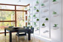 Indoor gardening / by Jeeto Butalia