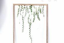 Moebe frame ideas