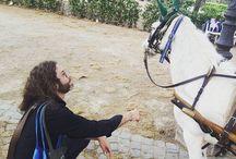 """Instagram #ConfrontoMammifero """"Vuoi sposarmi?"""" """"Ma quando si scolla questo?"""" #CavalloInfame"""