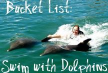 Bucket List / Things to do before you die.