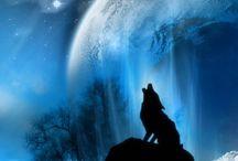 Moon licht