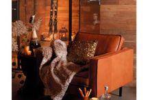 """Weihnachtsdeko: """"Luxury Lodge"""" / Trendthema Herbst/Winter/Weihnachten 2015 -   Edle Materialien wie hochwertige Naturhölzer, Metalle oder Felle, warme und glänzende Farben wie Silber, Gold und Kupfer  wirken bei diesem luxuriösen Trend sehr authentisch. Ein alter Dielen – oder Parkettboden, kombiniert mit einem weichen Schaffell, dazu ausgefallende und hochwertige Accessoires, all das vermittelt ein extravagantes und dennoch gemütliches Lebensgefühl."""