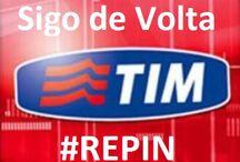 Tim beta / Teoca de repin