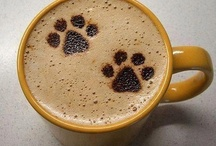 Paws Coffee