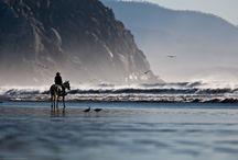 Trekking a cavallo / Cavalcare in Marocco, Australia, Italia, Nepal