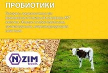 Пробиотики ENZIM Feeds