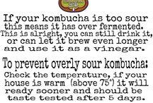 Kombucha Fermenting Tips!
