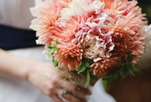 Wedding Bouquets / by Linda James