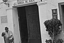 Adriana Boza's photos