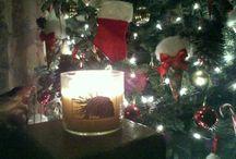 --- CHRISTMAS --- / by Zuleika Ramos