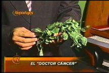 cáncer como curar