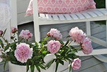fiori decor