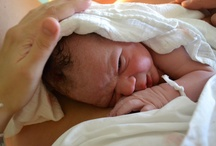 novorodenecke