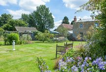 Gardens / A selection of inspiring gardens from properties available to buy or let from scottfraser in Oxford, Witney and surrounding villages
