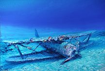 US sunken ships and or planes