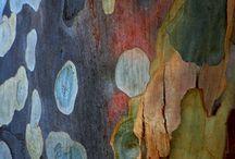 Aqua arbre mysterieux