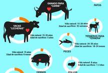 Sobre Animales