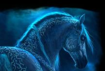 paard magic