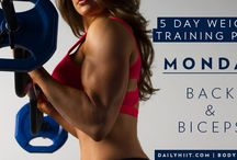 exercise /weight training