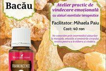 Ateliere vindecare Bacău