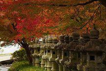 Japão / Japon