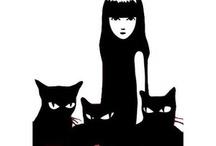 Black Cat Fascination