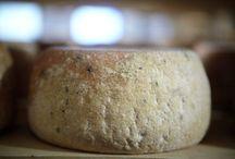 Bellwether Farms Cheese + Yogurt