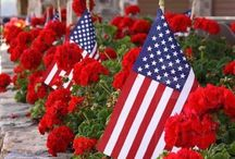 American Garden / Stunning flowers and landscaping ideas for your home.