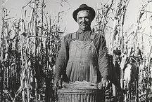 Vintage Farm Photos