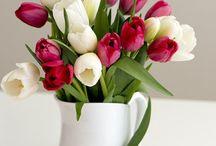 Çiçeklerim ;)