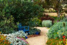 garden ideas josh