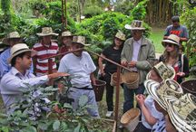 Destination: Cundinamarca