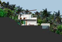section landscape