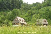 A traditional wooden house in Maramures: Amizadil