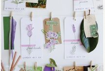 Crafts / by Stephanie B.