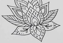 fiori di loto serena